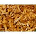 Champignons de la forêt deshydratés 25g 2