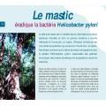 Mastiha Therapy 6